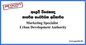 Marketing-Specialist