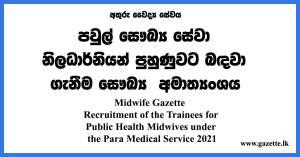 Midwife Gazette