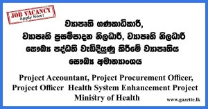 Project-Accountant,-Project-Procurement-Officer