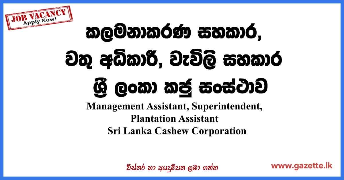 Sri-Lanka-Cashew-Corporation