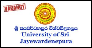 Project Engineer - University of Sri Jayewardenepura
