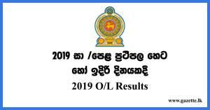 ol-exam-results-2019
