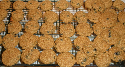 blueberryoatcookies