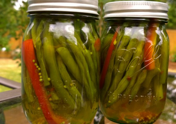 canned reen beans pickled