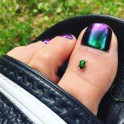 toenails and pedicure trending