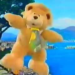 L'orso Ciro