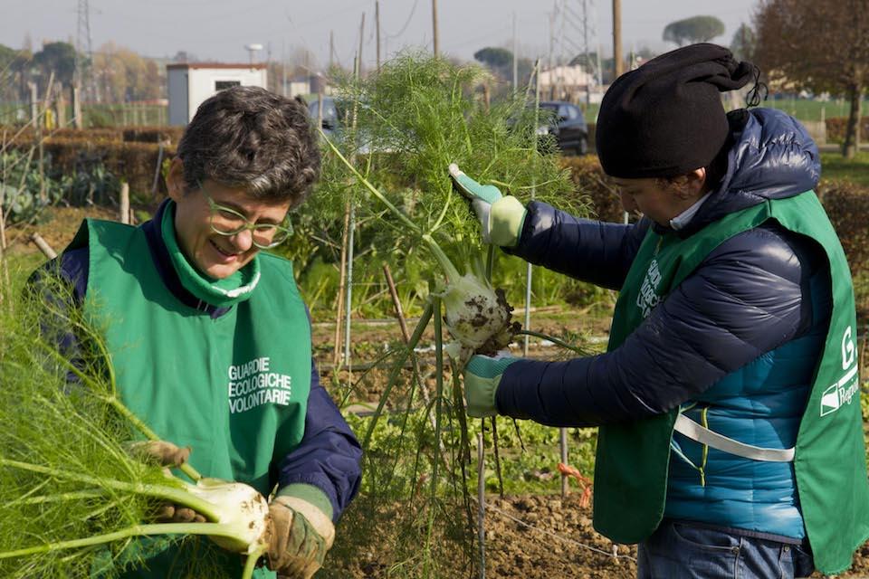Approvato il nuovo regolamento delle Guardie ecologiche volontarie