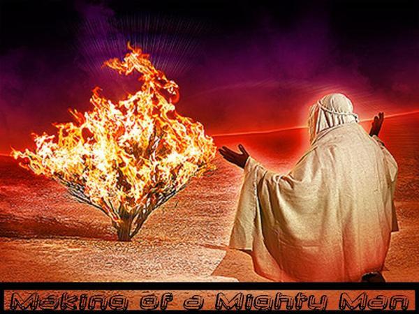 burning bush church fathers # 49