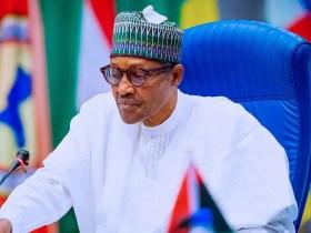 How to know the Buhari Effect – Babatunde Fashola