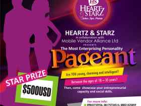 The Most Enterprising Personality Pageant 2020: $500USD Up for grab