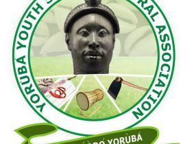 Treasury looters and corrupt politicians deserve death penalty not social media users - YYSA, Ogun