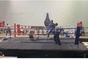 NSF Edo: Boxer, Adegbola Knocks Out Opponent In 15 Seconds