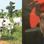 Ban Open Grazing in 14 days or ESN handles it for South-East - Mazi Nnamdi Kanu