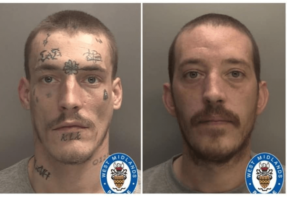 Two brothers found guilty of killing their Sibling