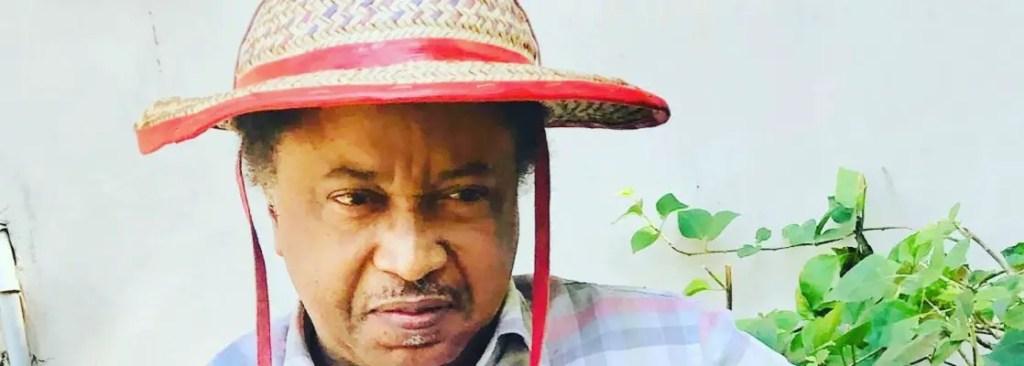 Shehu Sani Condemns Nnamdi Kanu's ESN For Attacking Herdsmen