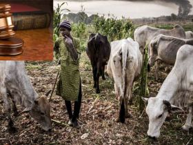 Anti-Open Grazing law: The Signatures of Fulani in Nigeria