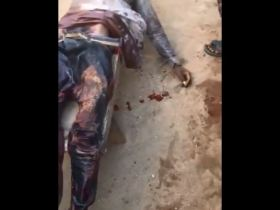 End SARS peaceful protest: Three teenager shot dead in Ogbomoso