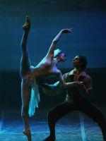 Torino, Teatro Nuovo, 12 XII 2014 (Il Balletto del Sud nel Lago dei cigni)