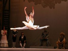 Torino, Teatro Regio, 19 XII 2014 (Don Chisciotte, Ballet Nacional de Cuba) 3