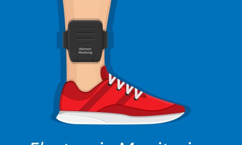 can i get electronic monitoring removed in sc