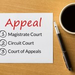 how to appeal a criminal conviction in SC
