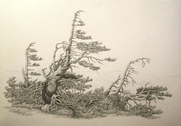 """Seven Trees"" by Emerson E. Glass"