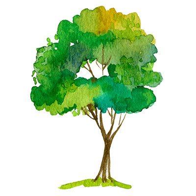 Tree Planting GCC event