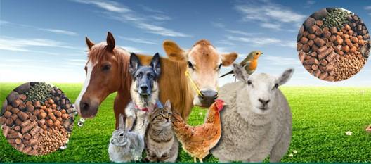 Image result for Livestock Feeds
