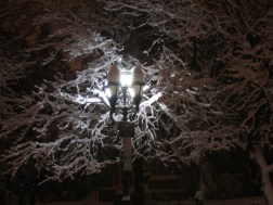 snow007