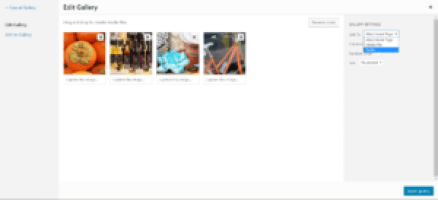 WordPress gallery edit screen