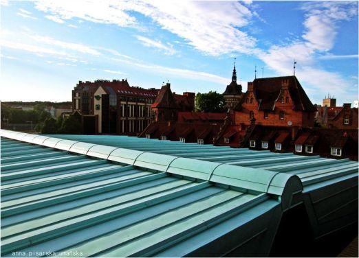 dach z widokiem na Dwór Miejski
