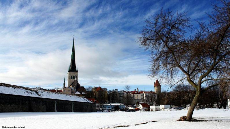 Tallinn w zimowej szacie.