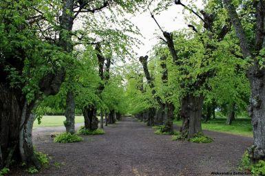 Pałac Skokloster, park
