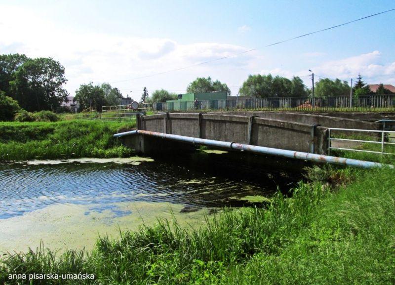 stary most na Motławie