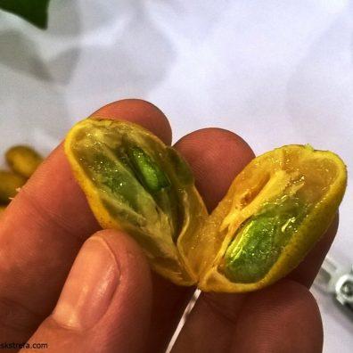 kwaśne owoce