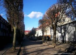 ulica Stefana Miraua