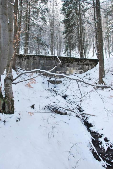 Szpecąca krajobraz historyczna budowla hydrotechniczna retencji wód (Nadleśnictwo Lądek-Zdrój).