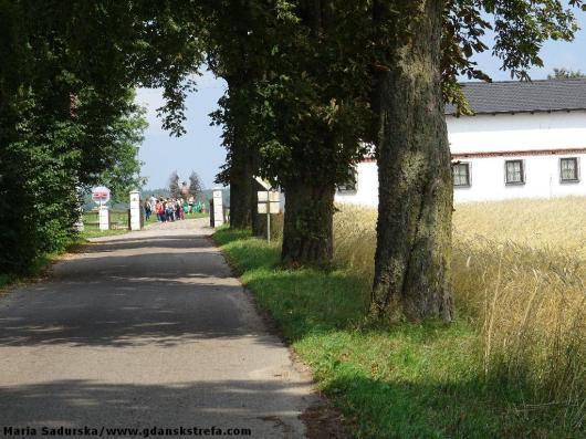 Droga prowadząca do dworu w Będominie