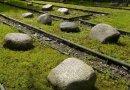 cmentarz 11 wsi