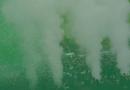 Historyczny sezon Biało-Zielonych. Wywiady z piłkarzami (wideo)