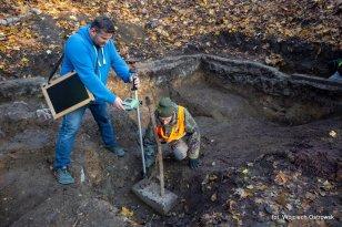 Miejsce poszukiwań archeologicznych