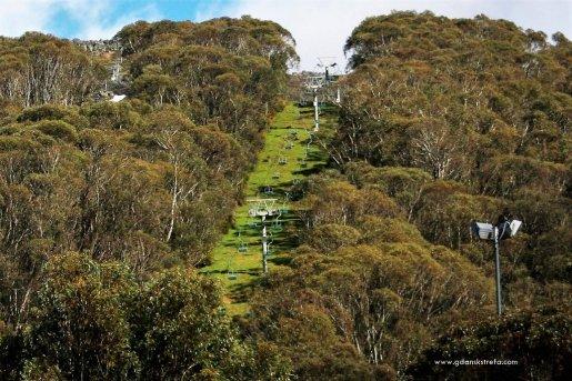 Australia, Góry Śnieżne, Thredbo