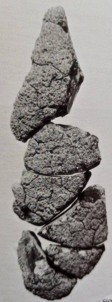 Jeden z najstarszych bursztynowych przedmiotów – płytka z Siedlnicy, fot. R. Sierka, Investigations into amber 1999 r.