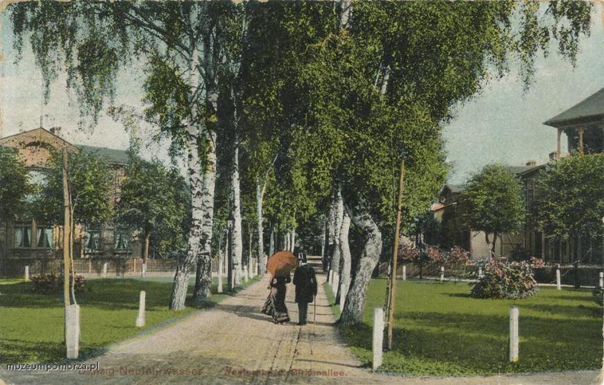 Najchętniej uczęszczana aleja na Westerplatte - aleja Brzozowa (Birkenallee).