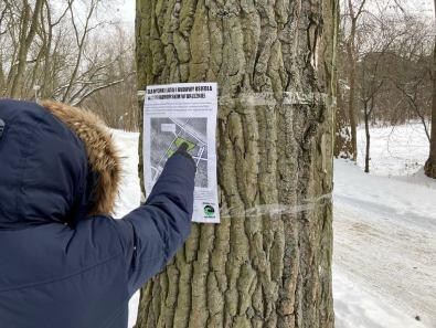 Nie dla wycinki lasu i budowy osiedla w lesie nadmorskim w Brzeźnie!