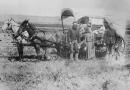 Jak broń z Gdańska zdobywała Dziki Zachód