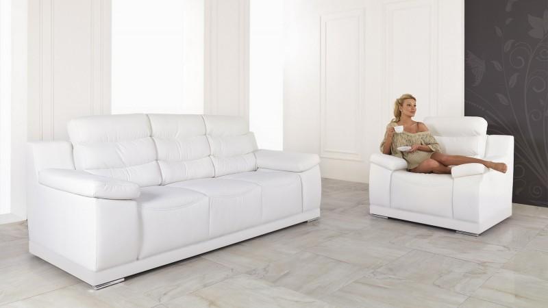 fauteuil de salon design en cuir de