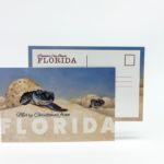 Sea Turtle Christmas Post Cards - Crawling