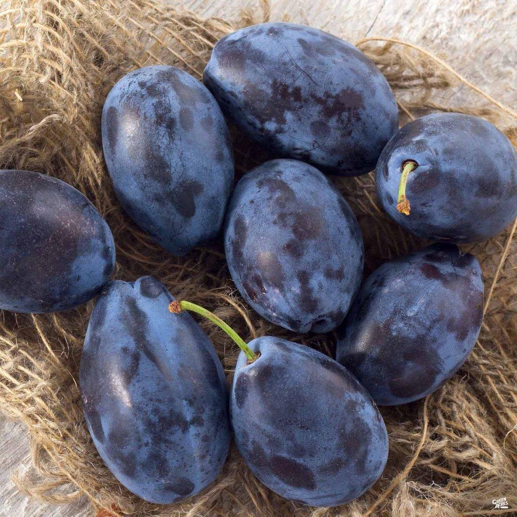 Prunele, miracole pentru sănătate