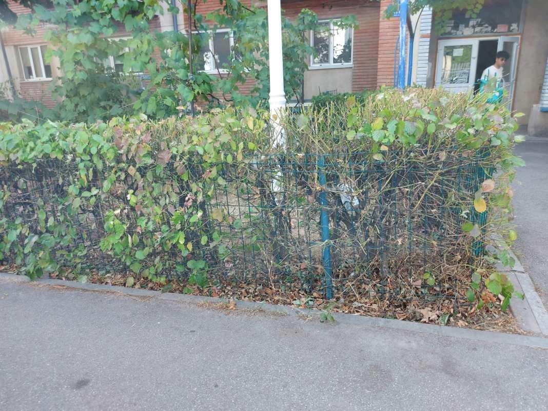 Primăria Craiova achiziţionează gard bordurat şi ornamental pentru împrejmuirea spaţiilor verzi şi gard pentru împrejmuirea locurilor de joacă